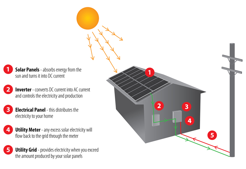 How do solar cells work essay